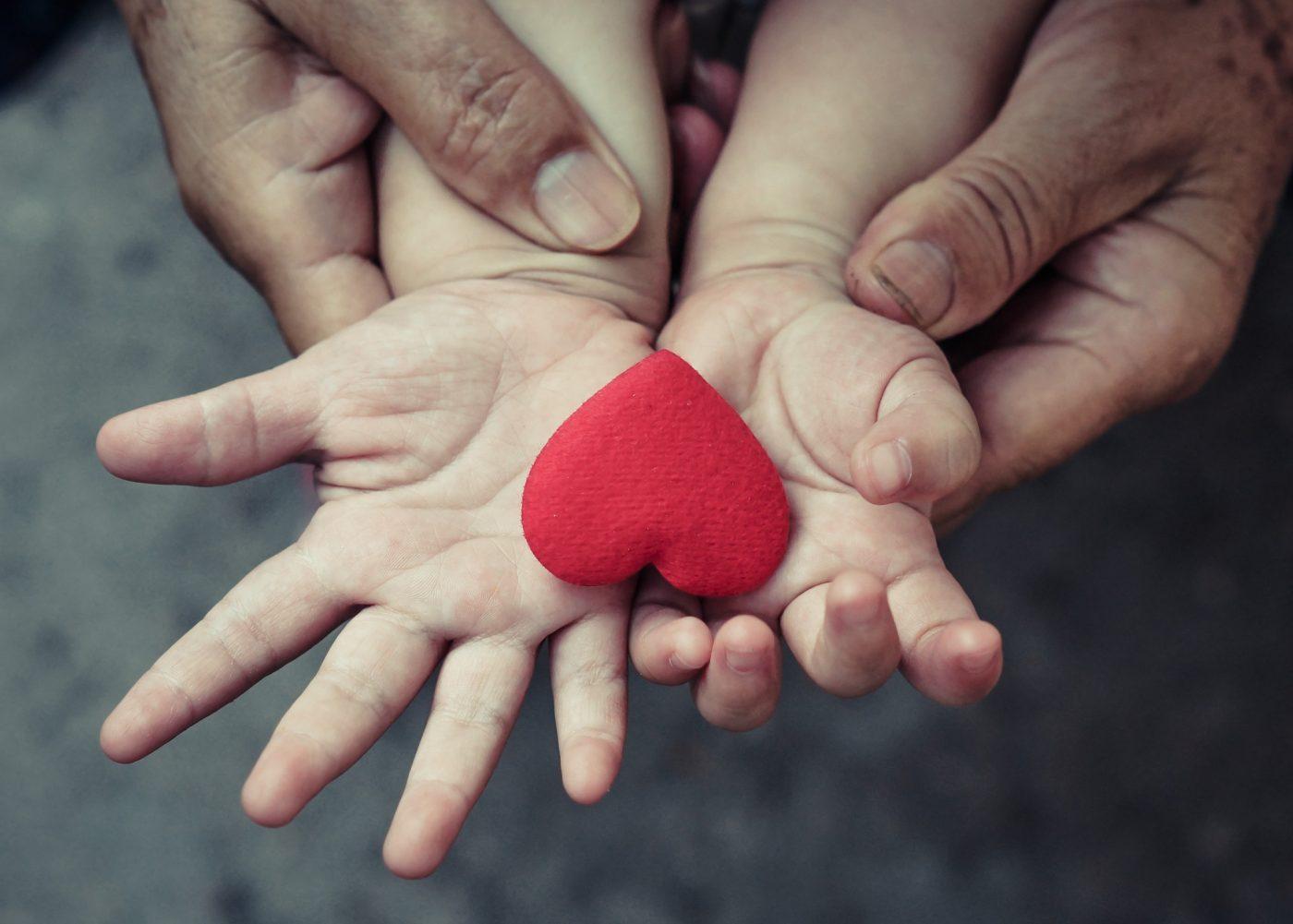 Благотворительность в Беларуси. Простые шаги навстречу нуждающимся